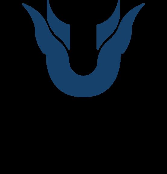 TeamUnique