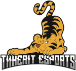 Tiikerit Esports